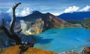 Acacia Tour and Travel - Ijen Crater Tour